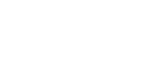 We The Action - Election Protection